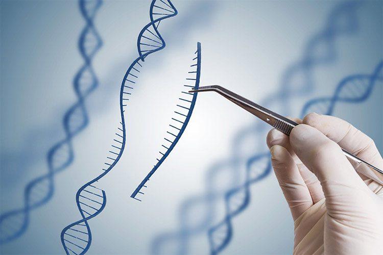 ژن درمانی / gene therapy