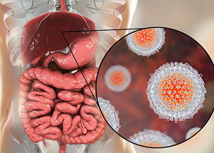 ویروس هپاتیت
