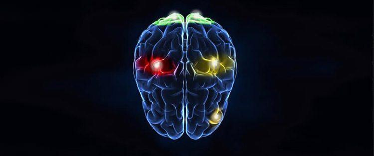کنترل مغزی