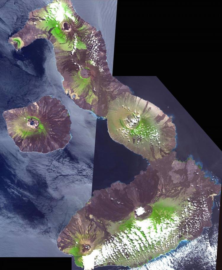 گالاپاگوس