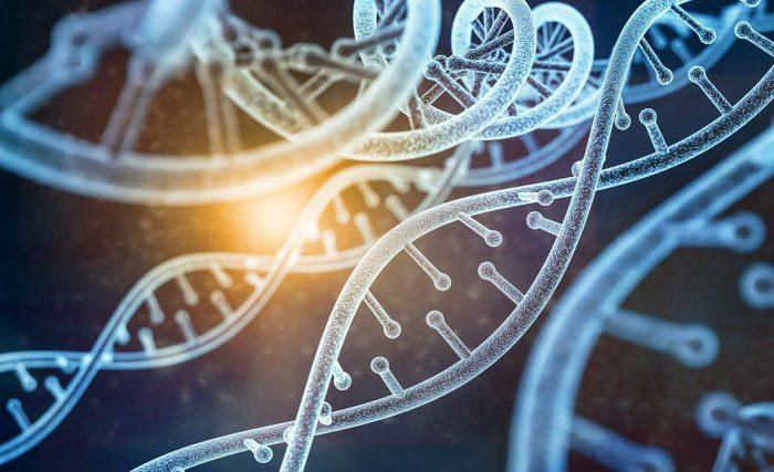 مهندسی زنتیک / Genetic Engineering