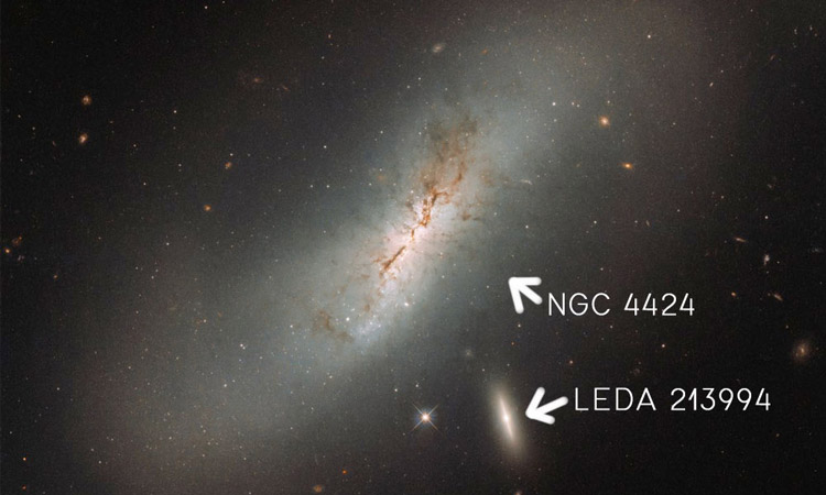 Galaxies NGC 4424 and LEDA 213994
