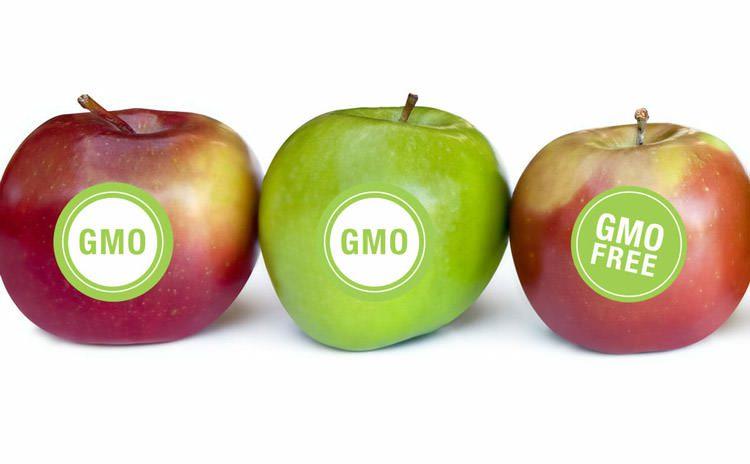GMO / اصلاح ژنتیک گیاهان