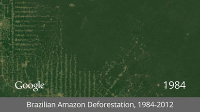 Brazilian-Amazon-Deforestation-thumb-650x364-120978
