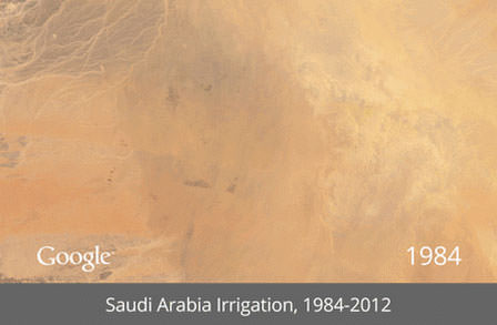 Saudi-Arabia-Irrigation-thumb-650x425-120984