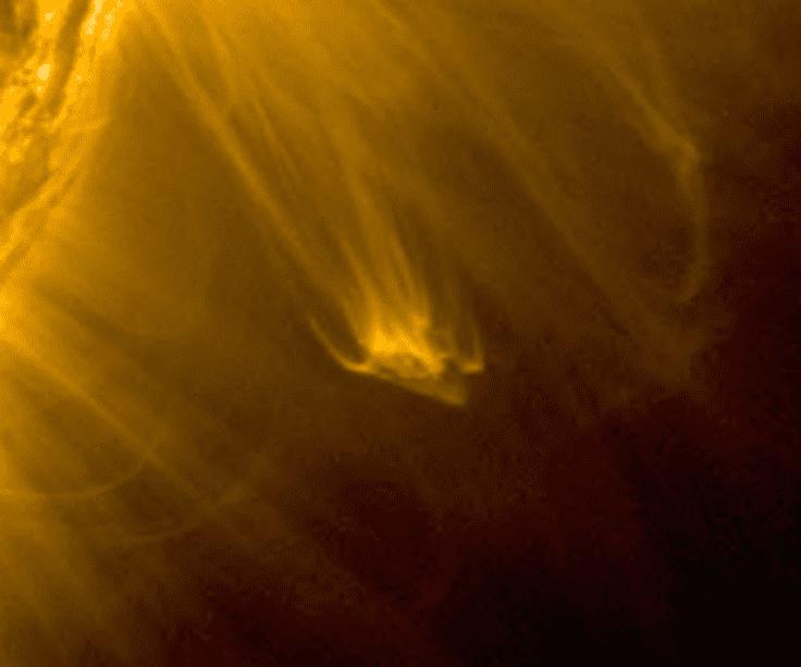 آیا حضور سفینه بیگانه در اطراف خورشید حقیقت دارد