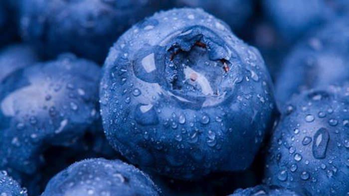 آلایندهها (ذرات معلق) ازطریق غذای آلوده وارد بدن می شوند و نقش زیادی در تحریک IBD دارند.