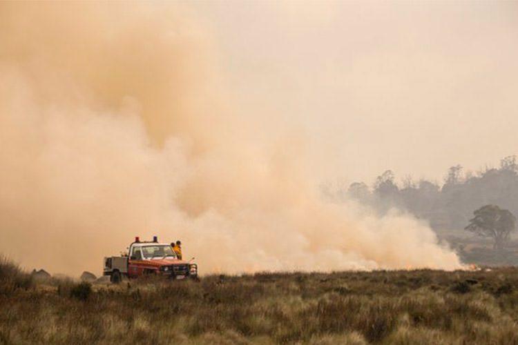 مقابله با مشکلات ناشی از افزایش گرمای تابستانی در استرالیا با استفاده از تکنیکهای جدید