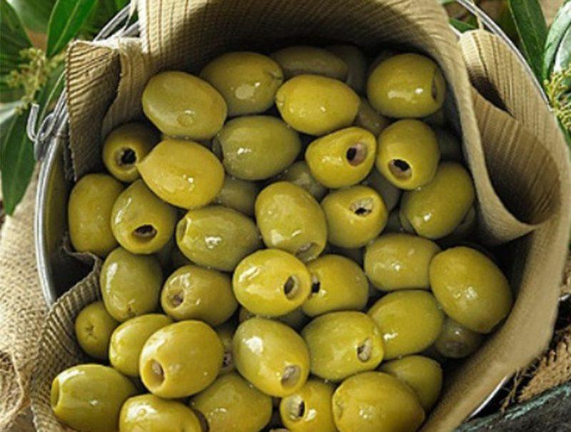 olive Roodbar - زیتون سرای پارسا